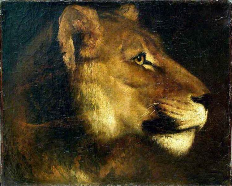 """""""Head of Lioness"""" by Theodore Gericault"""
