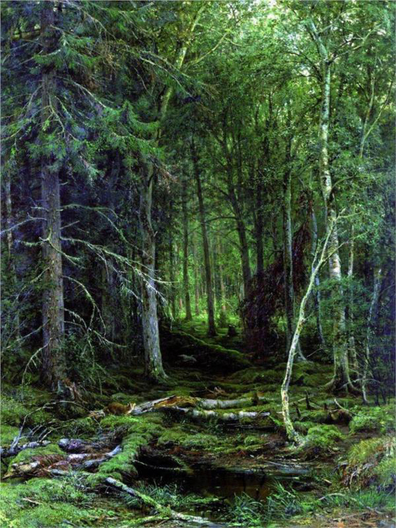"""Backwoods"" by Ivan Shishkin (1832-1898) Russian Landscape Painter"
